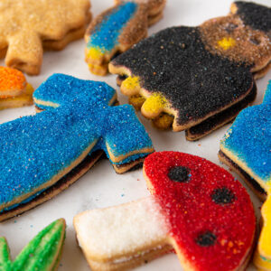 My Most Favorite Food Graduation Sugar Cookie Assortment